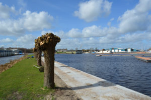 Jachthaven De Drait vernieuwingen 2019